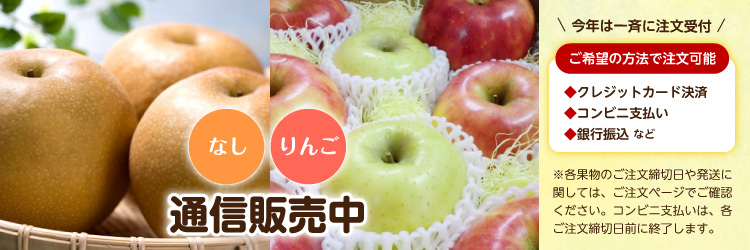 なし りんご 通信販売中