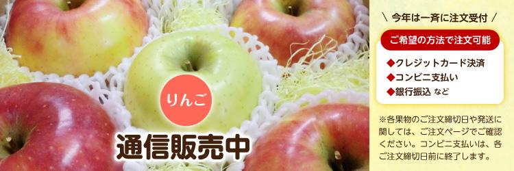 りんご 通信販売中