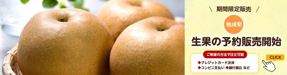 梨 葡萄 生果の予約販売開始