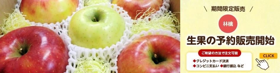 林檎 生果の予約販売開始